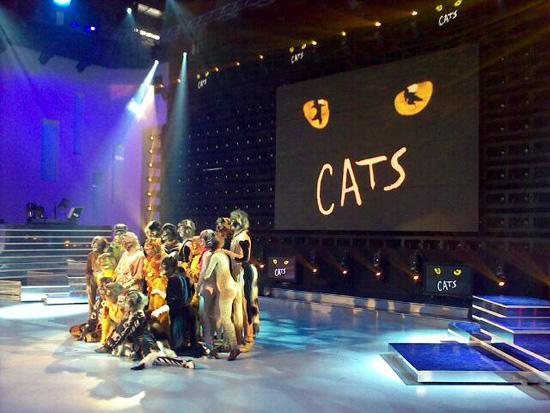 """Il Cast di Cats a """"Domenica in - 7 Giorni"""" (Foto Iaia2009)"""